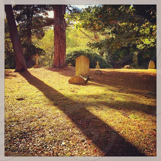 Autumn shadows cemetery photo