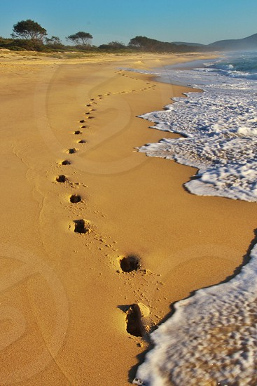 foot prints on a brown sandy beach with waves crashing photo