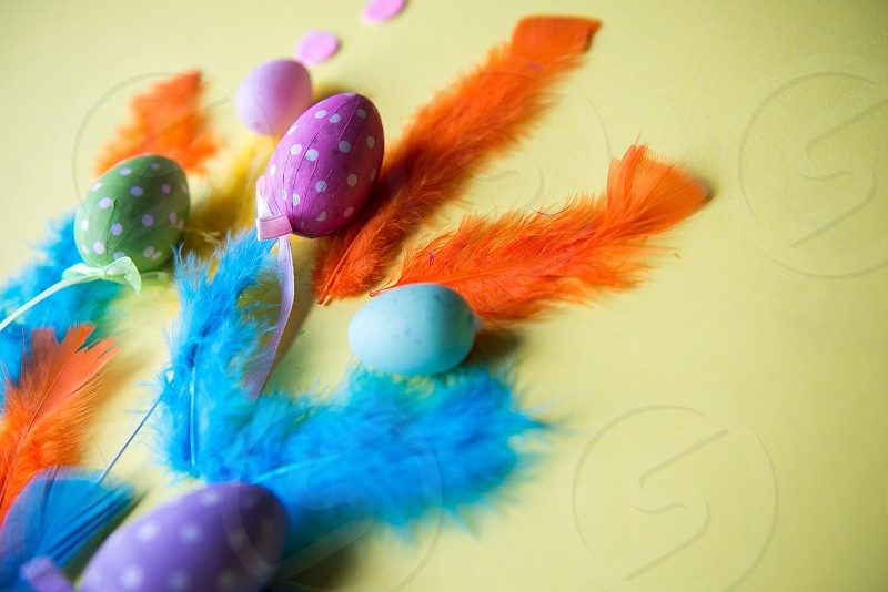 Easter eggs and colorful feathers photo