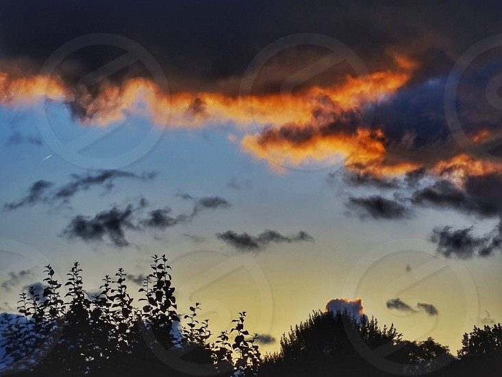 Dramatic skyskycolorfulnaturecloudscloudytreetopstreesevening photo