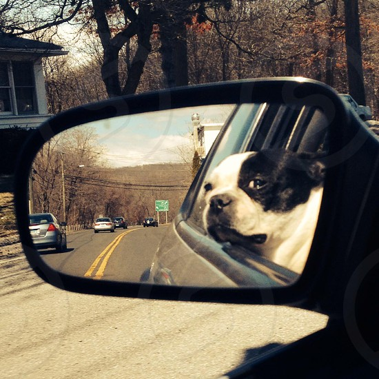 Looking out the mirror to the past as I drive through the wind on my mommies lap.  photo