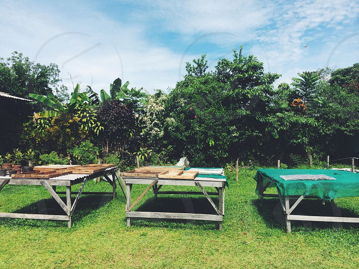 3 wooden table on green grass photo