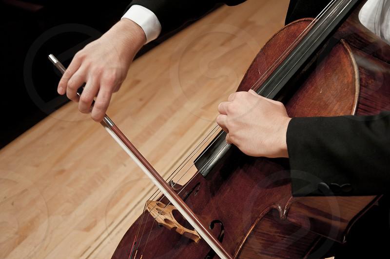 Cello 1 photo