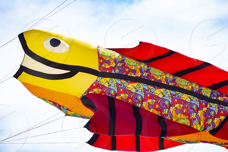 Flying kite with Fish-shaped colored yellow and red photo