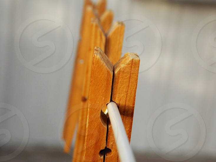 brown wooden clothing clip on clothes line photo
