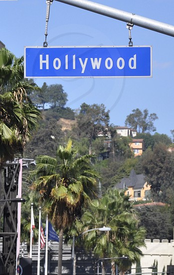 hollywood signage beside green palm trees during daytime photo
