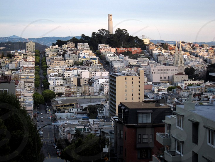 San Francisco Coit Tower photo