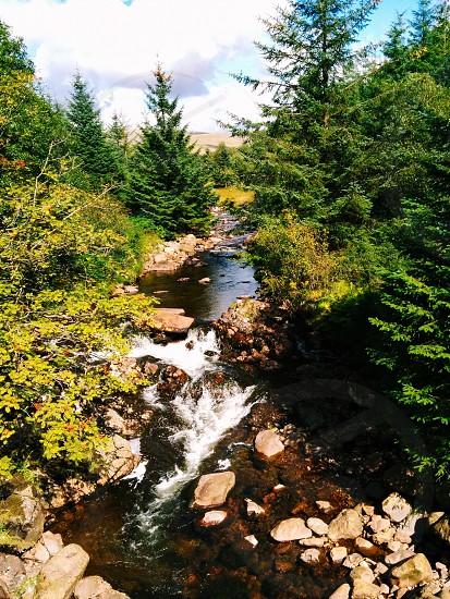 Natural stream  photo