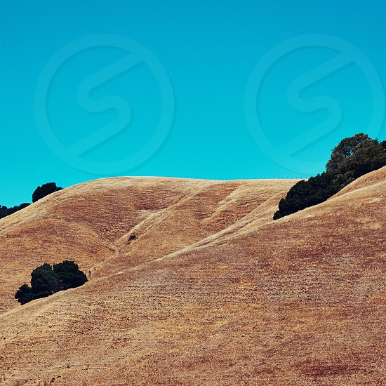 Orinda California dry drought grass landscape nature yellow brown blue sky clear hiking outdoors photo