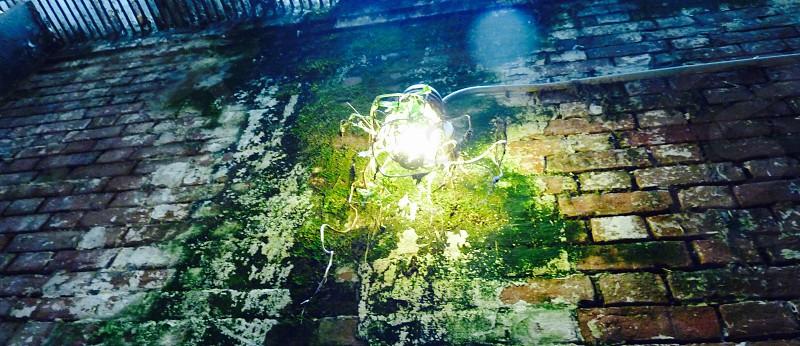 Weathered lights.  photo