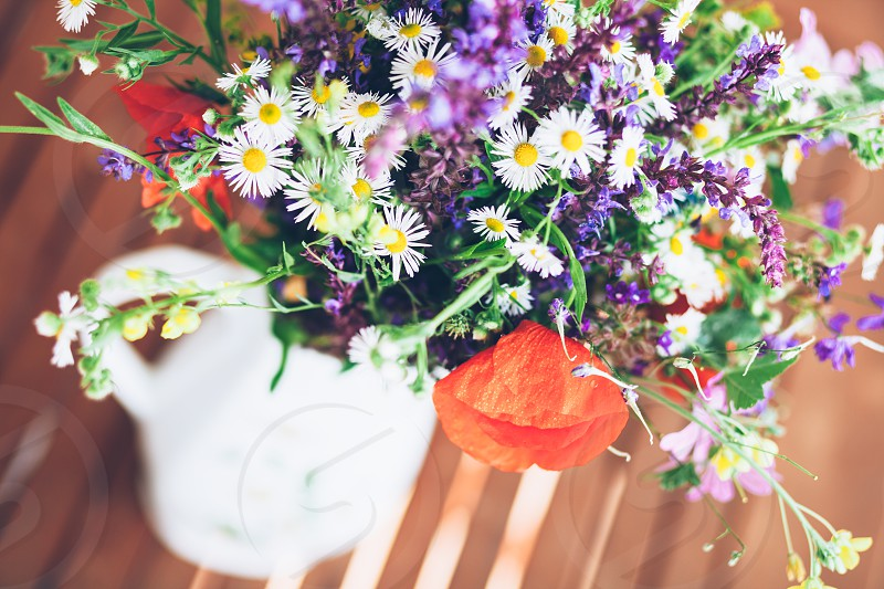Bunch of wild herbs and flowers in a white vase photo