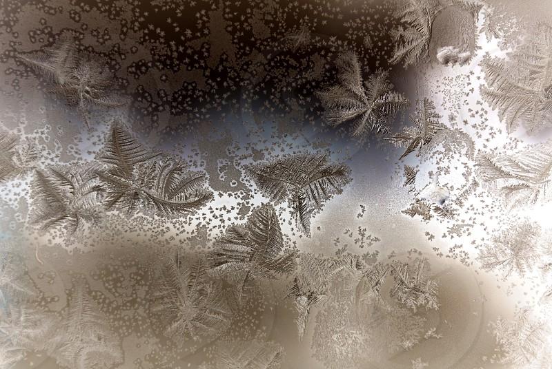 Frosted door window in Maine. photo