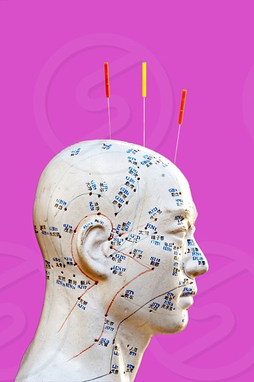 acupuncture head model with acupuncture needles photo