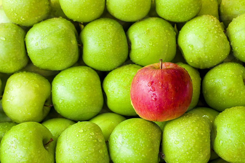 green and red Apple for snacking Conceptual one of a kind one red apple among a pile of green apples photo