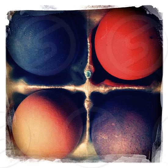 Colorful Eggs photo