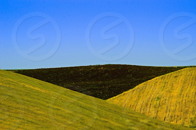 green hills under blue sky photo