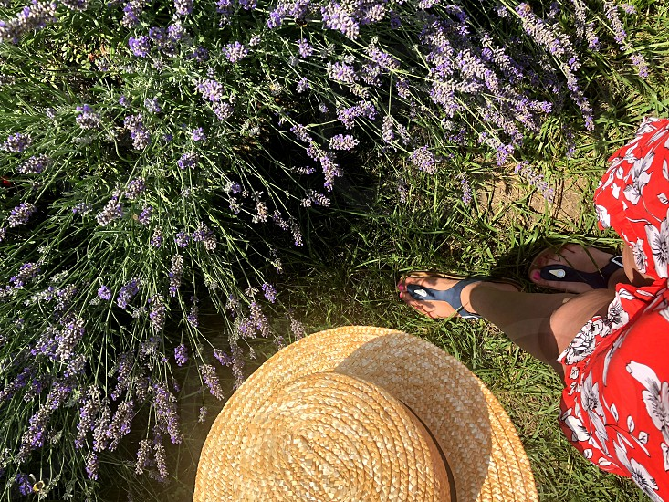 Woman feet flowers and love.  This is a great combination photo