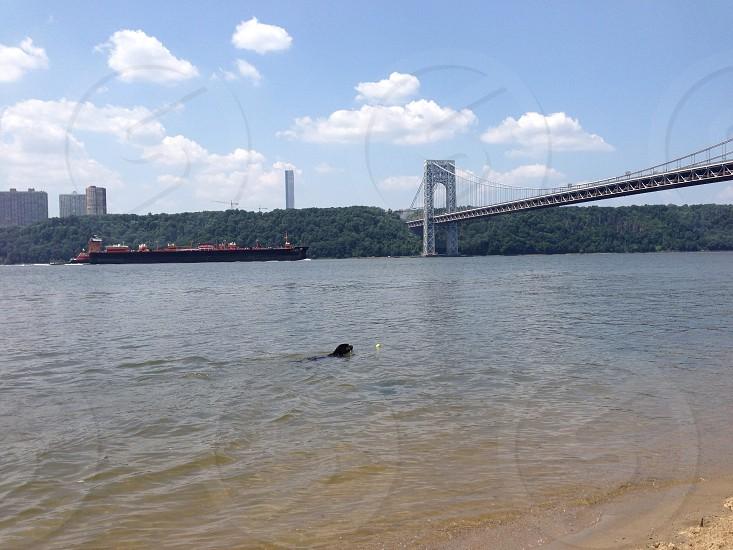 George Washington bridge NYC  photo