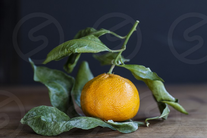winter food citrus season orange leaves fresh picked orchard farmer chef texture photo