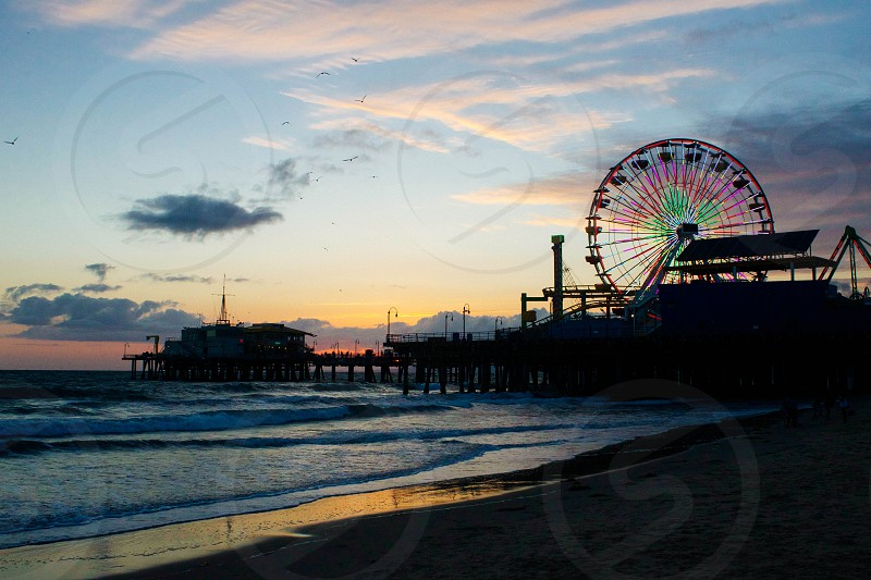 silhouette photography of ferris wheel near body of water photo