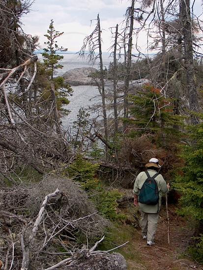 man walking on trail photo