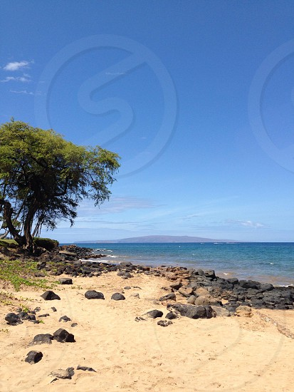 Beautiful Day in South Maui photo