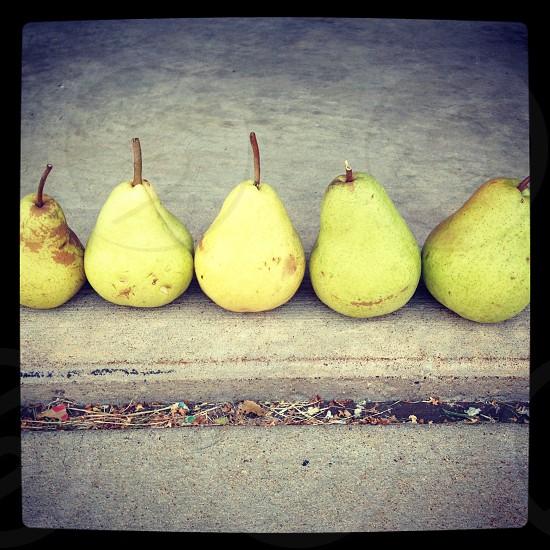 Pears pears pears photo