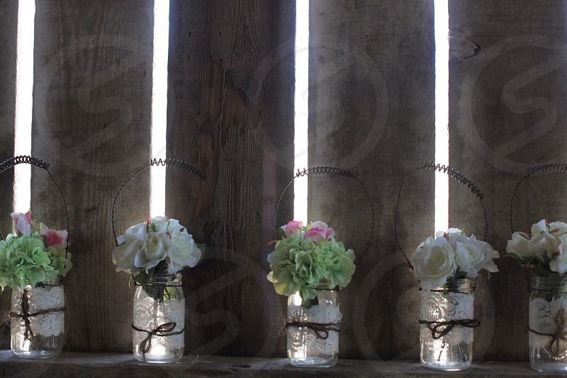 5 flower vase beside a wooden wall photo
