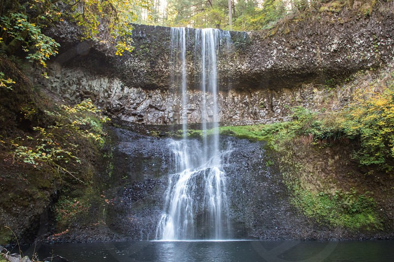 Silver Falls State Park waterfall cliff forest park Oregon photo