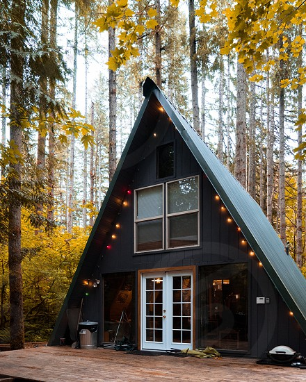 Cabin; woods; fall photo
