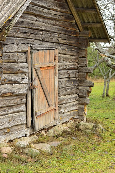 An old log house in the village photo
