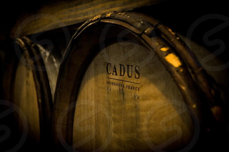 Wine wine barrel photo