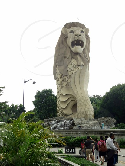 view of merlion statue in singapore photo