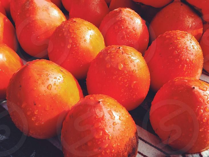 red round fruit photo