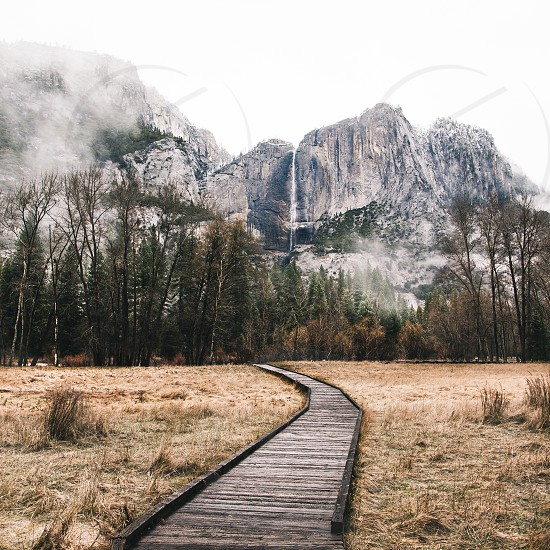 wooden pathway by the grass going towards trees and rocky mountain at distance during daytime photo