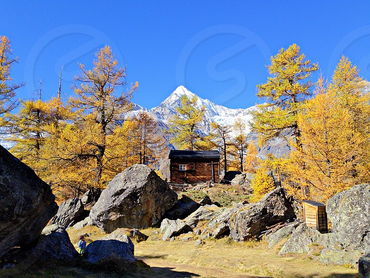photo of trees and house surrounded with mountain at daytime photo