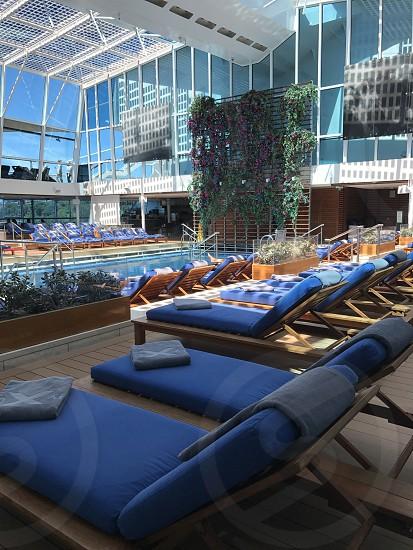 Cruise pool Celebrity Cruise Line Celebrity  photo