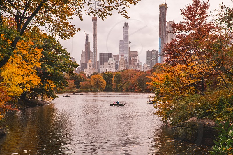 Beautiful fall colors in New York's Central Park! photo