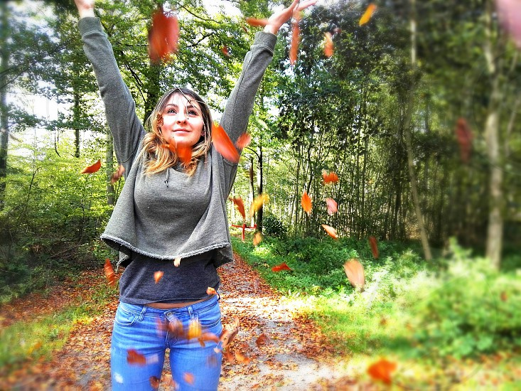 autumn is colorful photo