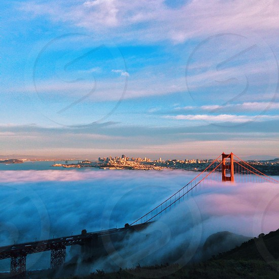 red suspension bridge covered by fog photo