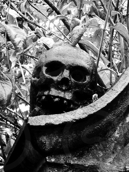 United Kingdom. Scotland. Edinburgh  Skull carving on a tomb in the old Calton Hill Cemetery. photo