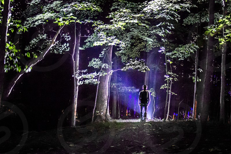 Man in the woods photo