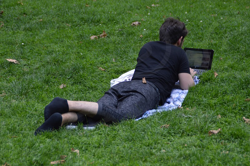 Working in the park photo
