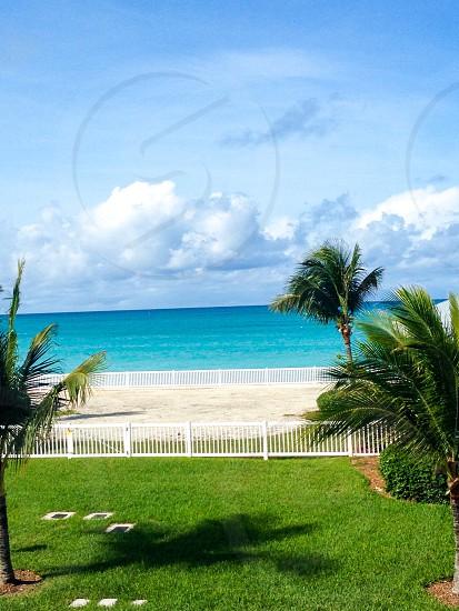 Travel Bahamas vacation beach tropical palm trees photo
