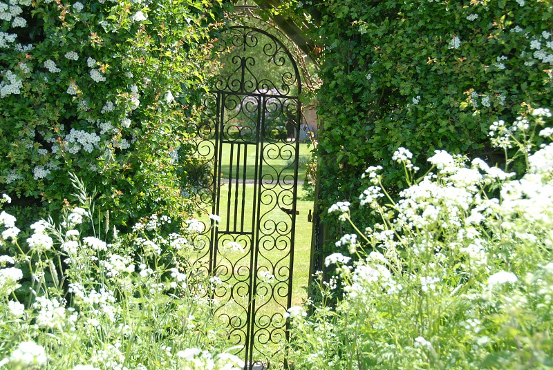 black metal gate surrounded by green leaf plants photo