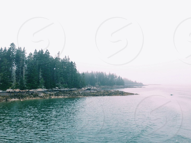 A foggy morning near Vinalhaven Maine photo