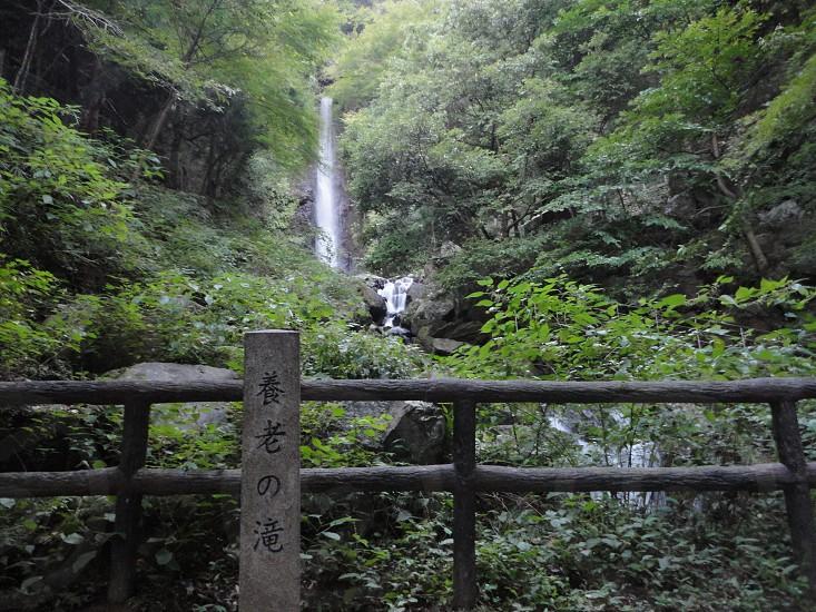 a waterfall in Gifu Japan 岐阜県、養老の滝 photo