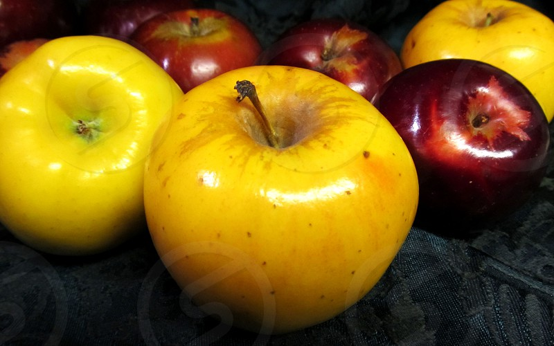Opal and Arkansas black apples photo