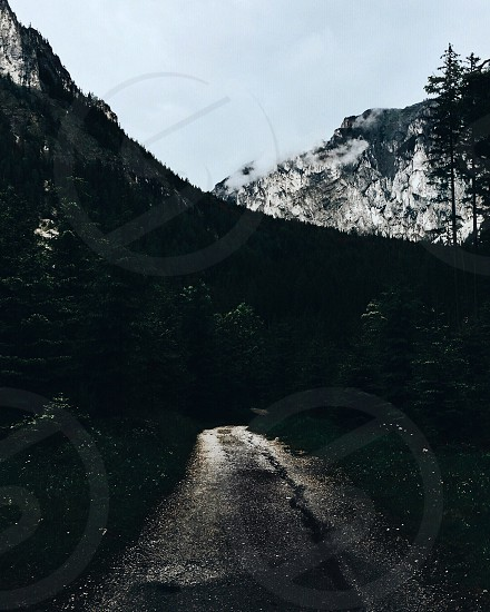 road in between trees beside mountain at daytime photo