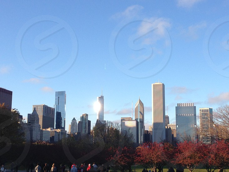 Chicago fall cold sunny city buildings photo